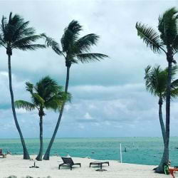 A image of a Cloudy day on the beach in tropical Islamorada Florida.