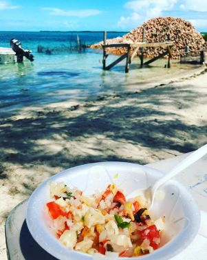 Conch salad in Bimini Bahamas with conch shells in the background.