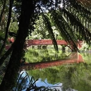 The beautiful Poets Bridge in New Plymouth.