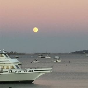Almost full moon in Plymouth.