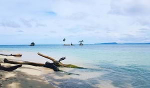 The blue water looks amazing in Bocas del Toro.
