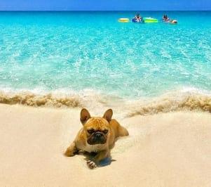 Aaaaaah, the Bahamas