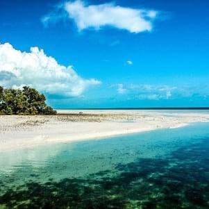 Beautiful beach in Crooked Island Bahamas.