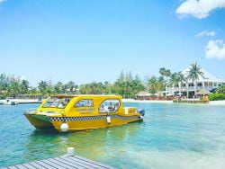 Taxi driver, please drop me off at Grand Cayman