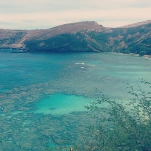 Snorkeling in this beautiful bay this afternoon
