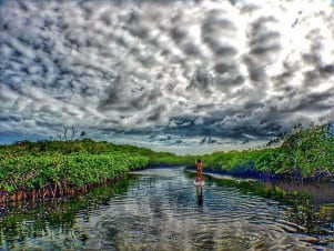 Stand up paddle boarding in Key Largo Florida Keys
