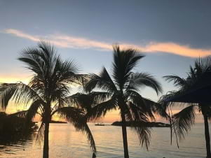 Palm trees frame a beautiful sunset in Marathon Florida Keys