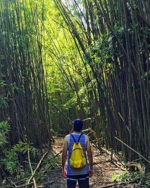 Loved hiking in Maui, Hawaii
