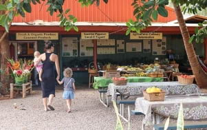 Hanging out in a local market on the Island of Molokai