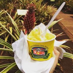 A picture of some Pineapple ice cream in Oahu Hawaii