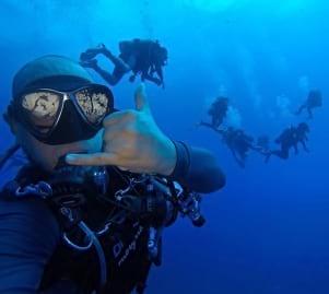 Cool under water shot in Saba Caribbean.