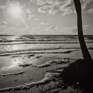 Black and white image of the beach in Tortola bvi.