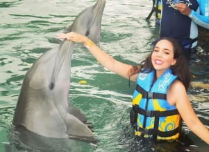 Dolphin adventure in Tortola.